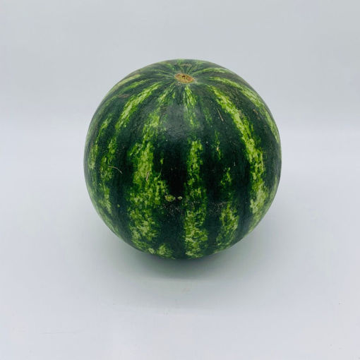 Picture of Water Melon Prsonal (Each) 小西瓜
