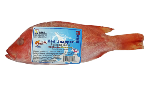 Picture of Red Snapper | 紅立魚