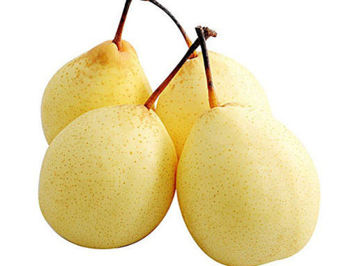 Picture of PEAR CHINA(Around 1.5lb) 水晶梨